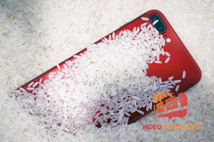 Hình 3: Cho iPhone vào gạo